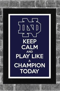 Keep Calm Notre Dame Fighting Irish! Notre Dame Football, Nd Football, College Football Teams, Football Season, Collage Football, Football Signs, Football Fever, Football Stuff, Sports Teams