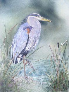 blue heron fine art america