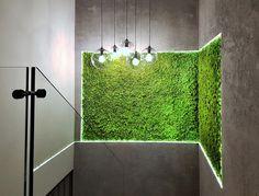 White Mansion, Green Interior Design, Futuristic Interior, Moss Wall, Tv Wall Design, Front Office, Wall Treatments, Office Interiors, Landscape Design