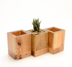 These small and unique planters are a perfect addition to any desk. Great for air-plants and small succulents.  For optimal planting and long-lasting beauty, the interior has been waterproofed with epoxy.  Dimensions: with: 3 depth: 3 height: 3,75 Please note: Each planter is unique due to differences in wood grain. Plant not included. All measurements are approximate.