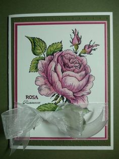 Rose's B-day Card by Pandora Spocks - Cards and Paper Crafts at Splitcoaststampers Scrapbook Cards, Scrapbooking, Copic Pens, Stamp Card, Women Birthday, Hand Stamped Cards, Rubber Stamping, Cards For Friends, Penny Black