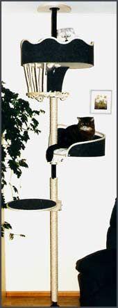 Catmax