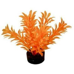 Blue Ribbon Colorburst Plant Exotic Mini Neon Orange. Designed in bright fluorescent colors, this gravel base plant anchors nicely, with soft plastic leaves & branches that are sturdy enough to stand up on their own, but soft enough to sway in the water. Safe for fresh or salt water. Royal Item Number: ABLCB2101NOR