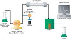 How Does High Performance Liquid Chromatography Work?  The components of a basic high-performance liquid chromatography [HPLC] system are shown in the simple diagram in Figure E.
