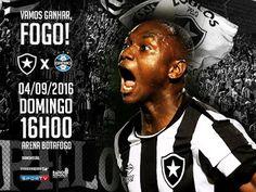 Blog do FelipaoBfr: Sem tempo pra lamentações, Botafogo encara o Grêmi...