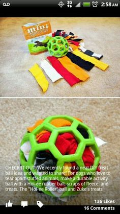DIY dog toy