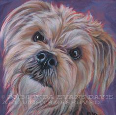 Sweet little Sammy. Acrylic on canvas.  If you'd like to commission a portrait, email me at lindadavispetportraits@gmail.com.