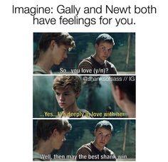 Newt will win. Right? I'm pretty sure Newt will win. I want Newt. I loveeeeeee Newt.