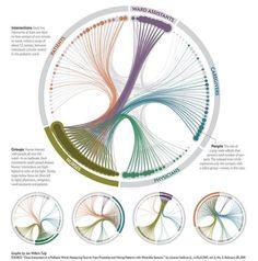 Visualisatie van big data over contactmomenten verpleegsters, patienten en artsen.