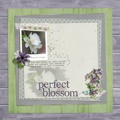 page by judy pink reptile may 2016 blog challenge