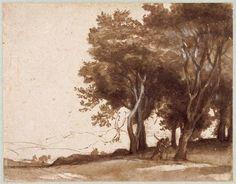 Etude d'arbres, lavis bistre et rehauts de blanc, 25x26 cm, Chantilly, Musée Condé  © RMN-Grand Palais (domaine de Chantilly) / René-Gabriel Ojéda