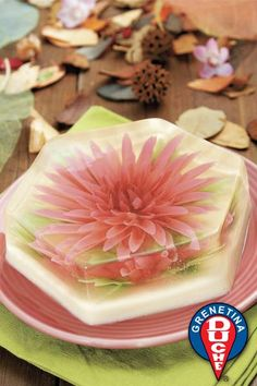 Such edible beauty! Gelatin Floral Gelatin