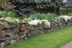 Stone wall garden- so many times I've dreamed of a yard surrounded by a stone wall, just like this
