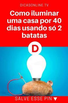 Iluminação alternativa, produzir energia | Como iluminar uma casa por 40 dias usando só 2 batatas | Receita para usar tubérculo como fonte de energia. | Isso mesmo, usar batata para produzir energia! Incrível, não?!