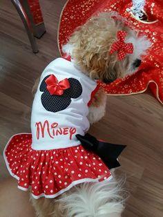 vestido minnie personalize com o nome do seu pet