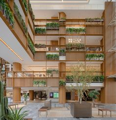 Architect Wendy Saunders, co-principal of AIM Architecture, said the aim was to bring nature into a type of space that is typically very sterile. Sustainable Architecture, Architecture Photo, Sustainable Design, Outdoor Paving, Green Facade, Interior Garden, Interior Design, Hotel Interiors, Modern City