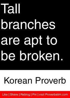 Tall branches are apt to be broken. - Korean Proverb #proverbs #quotes