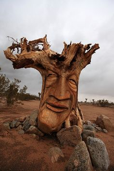 ✯ Carved Tree Root Face ~ A face carved from the wood of an upended tree root ball on the side of Yucca Mesa Road north of Yucca Valley, California ✯