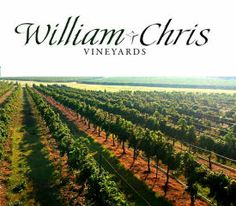 98 best texas hill country wineries images on pinterest texas hill