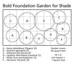 Bold Foundation Garden for Shade10 plants - White Flower Farm