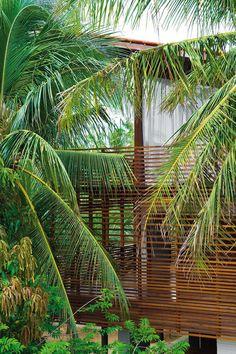 Camarim, Nic Olshiati · Casa Tropical