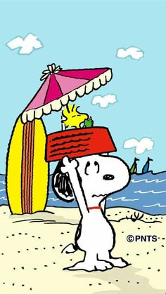 Snoopy Holding Dog Dish on His Head With Woodstock inside Reading Book