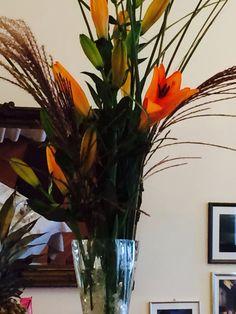 2014 Austria, Glass Vase, Classic, Plants, Home Decor, Linz, Derby, Flora, Classic Books
