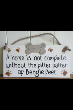 A home is not complete... #beagle