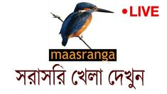 Maasranga Television ( Maasranga TV Live ) is an HDTV television channel in Bangladesh. The channel got permission from Bangladesh. Watch Live Cricket Online, Live Cricket Tv, Live Cricket Match Today, Watch Live Cricket Streaming, Sports Live Cricket, Tv Live Online, Icc Cricket, Cricket World Cup, Cricket Score