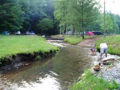 Central Appalachian Mountains   Primitive stream-side tent camping sites in the family or adult areas ...