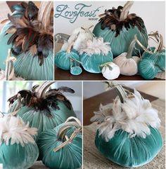 Hot Skwash Velvet Pumpkins!