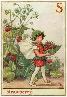 FLOWER FAIRIES/BOTANICALS: Strawberry; This is an original vintage Cicely Mary Barker Flower fairies colour print. It is not a modern reproduction, c1934; approximate size 11.0 x 7.5cm, 4.25 x 3 inches