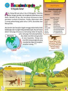 Homalocephale Dinosaurus Kepala Datar