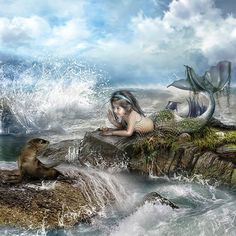 Fantasy - Mermaid Wallpapers and Backgrounds ID : 163481 Mermaid Wallpaper Backgrounds, Mermaid Wallpapers, Lion Wallpaper, Wallpaper Pictures, Mermaid Fairy, Cute Mermaid, The Little Mermaid, Baby Mermaid, Beautiful Mermaid