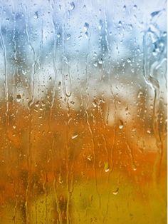 Windsor Fall Rain