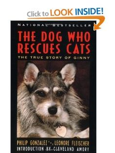 Amazon.com: The Dog Who Rescues Cats: True Story of Ginny, The (9780060927806): Philip Gonzalez: Books