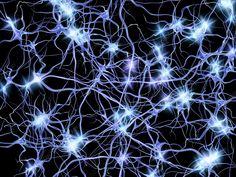 Computer artwork of nerve cells or neurons firing. Wall Art Prints, Framed Prints, Canvas Prints, Stress Images, Deep Brain Stimulation, Neurone, Especie Animal, Brain Art, Science Photos