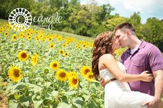 Sunflower Field Engagement Session / Engagement Pictures / Sunflowers / Sunflower Engagement