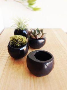 1 Mini Planter Plant Ball Black Matte for small by seasonsforyou