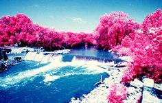 Walking in a winter pink land✌