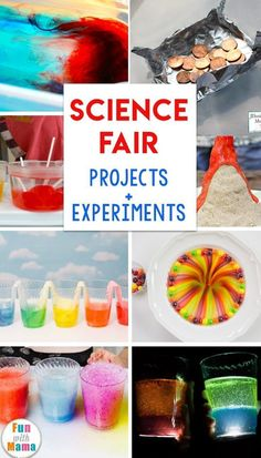 Best Science Fair Projects and science experiments for preschoolers toddlers and elementary students little projects for kids – little projects for kindergarten – little projects diy – little projects idea, little projects diy craft ideas Science Party, Easy Science, Science For Kids, Science Toddlers, Summer Science, Science Student, Forensic Science, Life Science, Kids Science Fair Projects