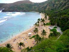 Aloha from Oahu Elvis - Spotlight on Elvis in Hawaii