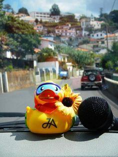 A JA #travelduck on a Grand Madeira tour, courtesy of Silvia Radvanska.