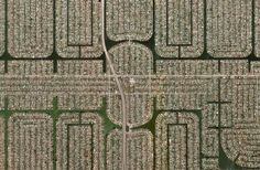 A densely populated neighborhood of Cape Coral, Florida