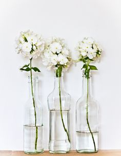 Fresh flowers in recycled glass bottles