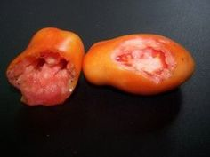 Some of the most commonly found tomato problems and how to deal with them.