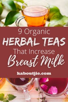 Are you struggling with your breast milk supply? These organic herbal teas that increase breast milk will boost your supply & give you more energy. #HerbalTea #OrganicHerbalTea #OrganicTea #IncreaseBreastMilk #Breastfeeding #Lactation #Nursing Breastfeeding Positions, Breastfeeding Tips, Organic Herbal Tea, Nursing Tips, Milk Supply, Herbalism, Herbal Medicine