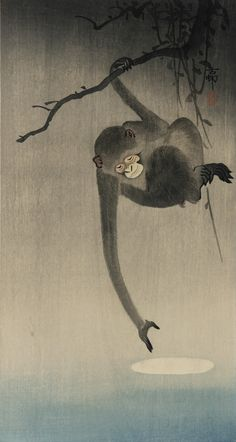 Gibbon reaching for reflection of the moon Author: Ohara, Koson (Japanese, Date: Medium: Color woodblock print Location: Freer and Sackler Galleries, The Smithsonian's Museums of Asian Art Japanese Painting, Chinese Painting, Chinese Art, Ohara Koson, Monkey Art, Year Of The Monkey, Japanese Prints, Japan Art, Woodblock Print