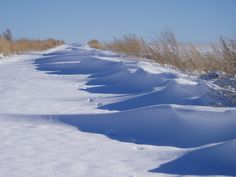 Powder - Playa