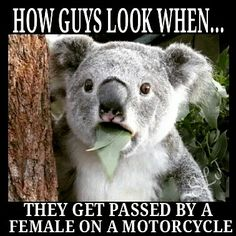Go girls! #FemaleRiders #motorcycles #biker                                                                                                                                                      More